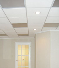 Basement Ceiling Tiles for a project we worked on in Mansfield, Ohio